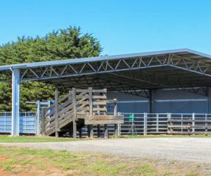 Stockyard shelters
